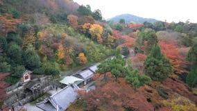 De mooie Pagode van kiyomizu-Dera otowa-San in dalingskleur stock video