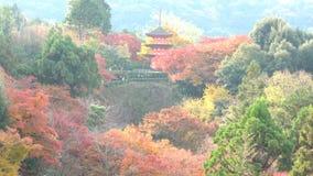 De mooie Pagode van kiyomizu-Dera otowa-San in dalingskleur stock footage