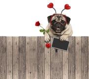 De mooie pug hond met hartendiadeem, bord en nam toe, hangend op houten omheining royalty-vrije stock afbeelding