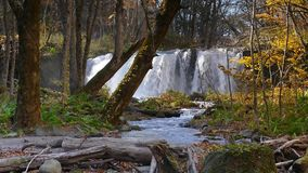 De mooie rivier die van de Oirasekloof het de herfstseizoen, Japan druing stock footage