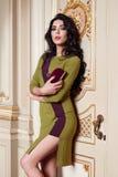 De mooie sexy vrouw in de elegante Inzameling van de kledings modieuze herfst van make-up van het de lente de lange donkerbruine  Stock Afbeeldingen