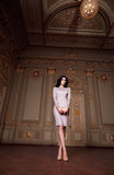 De mooie sexy vrouw in de elegante Inzameling van de kledings modieuze herfst van make-up van het de lente de lange donkerbruine  Royalty-vrije Stock Fotografie