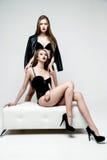De mooie sexy vrouwen van het slepen Stock Afbeelding