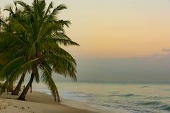 De Mooie Stranden van Dar-es-saalam bij Zonsopgang stock afbeeldingen