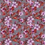De mooie takjes van de fruitboom in bloei op grijze achtergrond Lilac bloemen en rode bladeren De Bloesem van de lente Naadloos B vector illustratie
