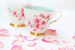 De mooie theekoppen en namen bloemblaadjes toe Royalty-vrije Stock Fotografie