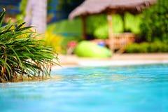 De mooie tropische pool met met stro bedekt op achtergrond stock afbeelding