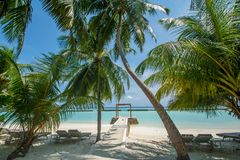 De mooie tropische zonnige mening van het strandlandschap met palmen en oceaan bij het eiland bij toevlucht stock afbeelding