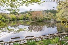 De mooie tuin van de Ryoan -ryoan-ji tempel, Kyoto, Japan royalty-vrije stock afbeeldingen