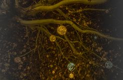 De mooie verfraaide takken van de Kerstmisboom met glanzende ballen in München vector illustratie