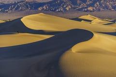 De mooie Vlakke Duinen van Mesquite Royalty-vrije Stock Afbeelding