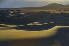 De mooie Vlakke Duinen van Mesquite Stock Foto's