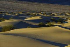 De mooie Vlakke Duinen van Mesquite Stock Fotografie