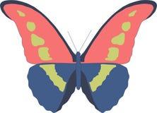 De mooie vliegende vlinder brengt vreugde Royalty-vrije Stock Afbeeldingen