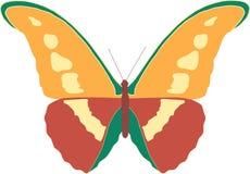 De mooie vliegende vlinder brengt vreugde Stock Fotografie