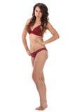 De mooie volledige vrouw van de lichaams donkerbruine schoonheid in sexy ondergoed Royalty-vrije Stock Fotografie