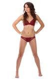 De mooie volledige vrouw van de lichaams donkerbruine schoonheid in sexy ondergoed Stock Afbeelding