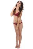De mooie volledige vrouw van de lichaams donkerbruine schoonheid in sexy ondergoed Stock Afbeeldingen