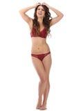 De mooie volledige vrouw van de lichaams donkerbruine schoonheid in sexy ondergoed Stock Foto