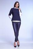 De mooie vorm van het de stijl perfecte lichaam van de bedrijfsvrouwendame Royalty-vrije Stock Fotografie