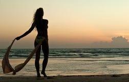 De mooie vrouw kijkt op zonsondergang Stock Afbeeldingen