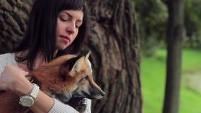 De mooie vrouw met een polshorloge houdt een rode vos dichtbij een boom stock videobeelden