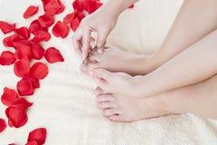 De mooie vrouwelijke voeten en namen bloemblaadjes toe Stock Foto