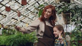 De mooie vrouweneigenaar van serre en haar leuke dochter nemen selfie met smartphone binnen boomgaard, die stellen en stock footage