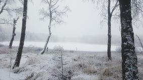 De mooie Winter stock fotografie