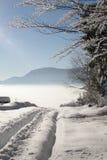 De mooie Winter Royalty-vrije Stock Foto's