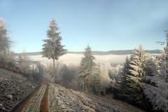De mooie Winter Royalty-vrije Stock Afbeelding