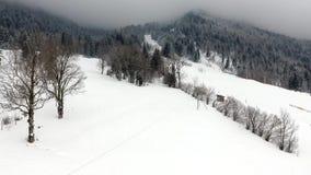 De mooie winter in de bergen stock footage