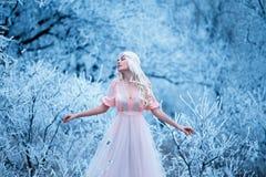De mooie winter en de lente Royalty-vrije Stock Afbeeldingen