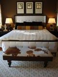 De mooie Zaal van het Bed Royalty-vrije Stock Foto's