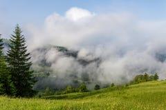 De mooie zonnige dag is in berglandschap Karpatisch, de Oekraïne stock afbeelding