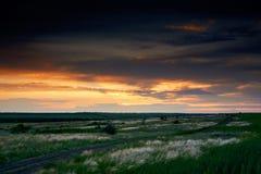 De mooie zonsondergang is in het gebied, de wilde bloemen en het gras, het zonlicht en de donkere wolken Stock Foto