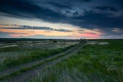 De mooie zonsondergang is in het gebied, de wilde bloemen en het gras, het zonlicht en de donkere wolken Stock Afbeelding