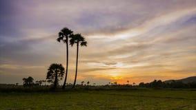 De mooie zonsondergang van de tijdtijdspanne in platteland stock footage