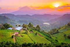 De mooie zonsondergang van Kisorooeganda over bergen en heuvels stock afbeeldingen