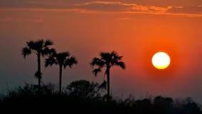 De mooie zonsondergang van de tijdtijdspanne in platteland stock video