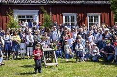 De mooie Zweedse mensen en de jonge geitjes genieten van medio de zomerdag in zonnige dag met kleurrijke kleding royalty-vrije stock afbeelding