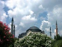 De moskee van Ayasofia stock afbeeldingen