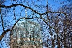 De Moskee van Heilige Petersburg, mening door takken in de lente stock fotografie
