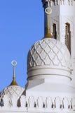 De moskee van Jumeirah in Doubai Stock Afbeeldingen