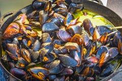 De mosselen in shell zijn gekookt die in een vat met soep wordt gevuld stock afbeeldingen