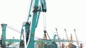 De motie van de zeehavenkraan stock video