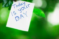 De motiverende uitdrukking vandaag is uw dag Op een groene achtergrond op een tak is een Witboek met een motiverende uitdrukking royalty-vrije stock foto's