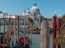 De motorgondels van Venetië Royalty-vrije Stock Foto's