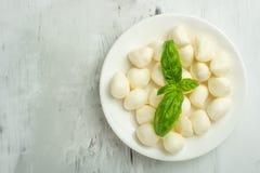 De mozarella met basilicum gaat - verse ingrediënten voor caprese salade met exemplaarruimte op lichte achtergrond, hoogste menin royalty-vrije stock afbeeldingen
