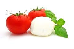 De mozarella van de tomaat royalty-vrije stock foto